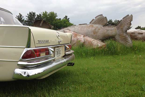 Walleye-1000-vintage rally