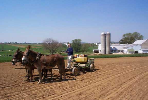 Tobin-Volkswagen Westfalia Amish-Farm